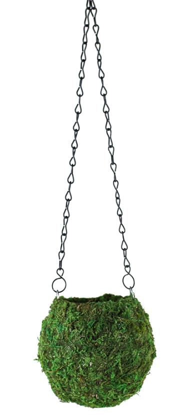 Green Kokedama Moss Hanging Ball Planter