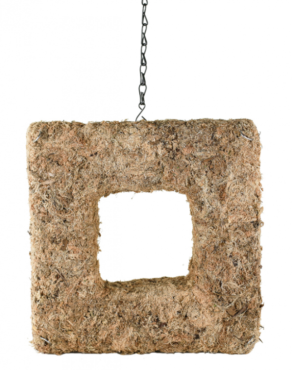 """SYND-1301 12"""" Square Hanging Sphagnum Moss Wreath"""