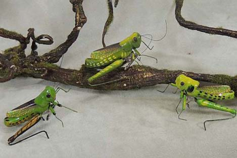 Artificial Grasshoppers Thumbnail