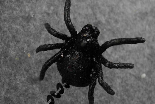 Artificial Spiders Thumbnail